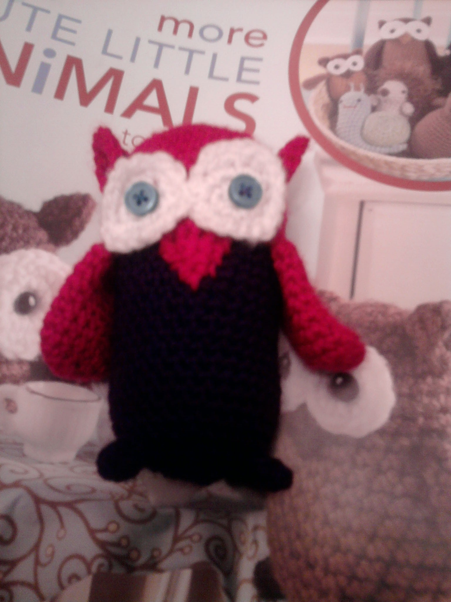 Little Crochet Owl
